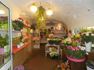 commerce fleuriste a vendre
